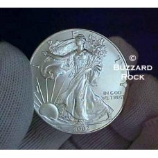 Year 2002 American Silver  Eagle Dollar in Air-Tite holder