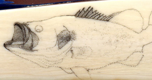 Colin Paterson Scrimshaw - Largemouth - Image 3