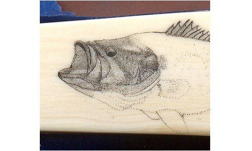 Largemouth Bass Scrimshaw - Image 5