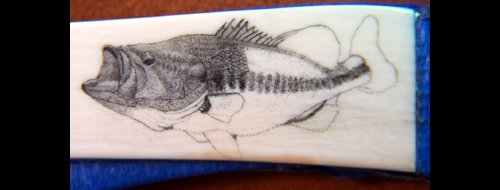 Colin Paterson Largemouth Bass Scrimshaw Project - Image 8