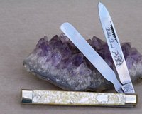 2005 Bulldog Brand Chip Abalone Doctor's Knife